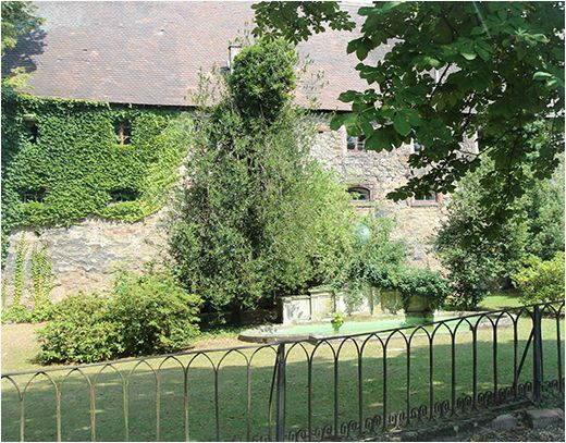 Burg & Wiese Neue Schloss Baden-Baden